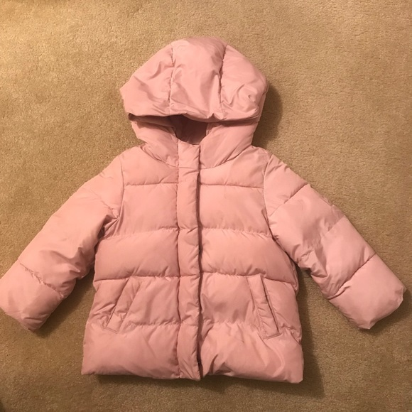 18a519efb GAP Jackets   Coats